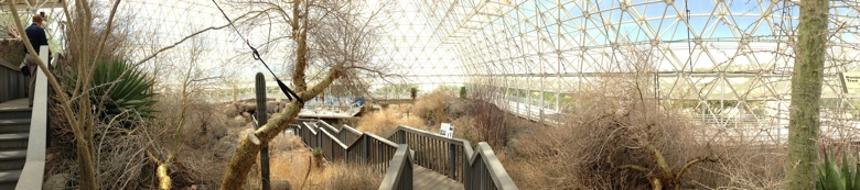 Savanna grassland in Biosphere 2